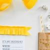 El Eco-friendly Kiddie Guía Bash cumpleaños - Parte 3 - torta y Goodie Bolsas